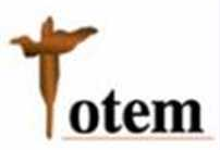 Totem Technology logo